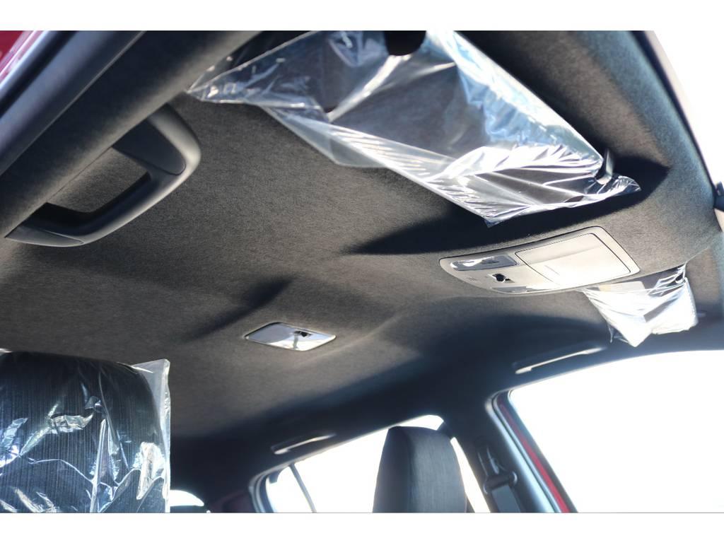 天張りもブラックに変更されております☆ | トヨタ ハイラックス 2.4 Z ブラック ラリー エディション ディーゼルターボ 4WD 新車未登録車 11インチナビ