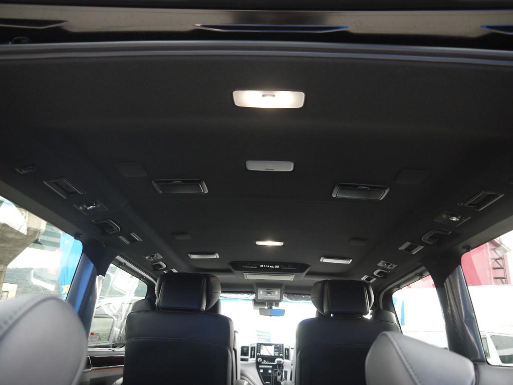 【ブラックシート×ブラックルーフ】ルーフには読書灯も完備されております。