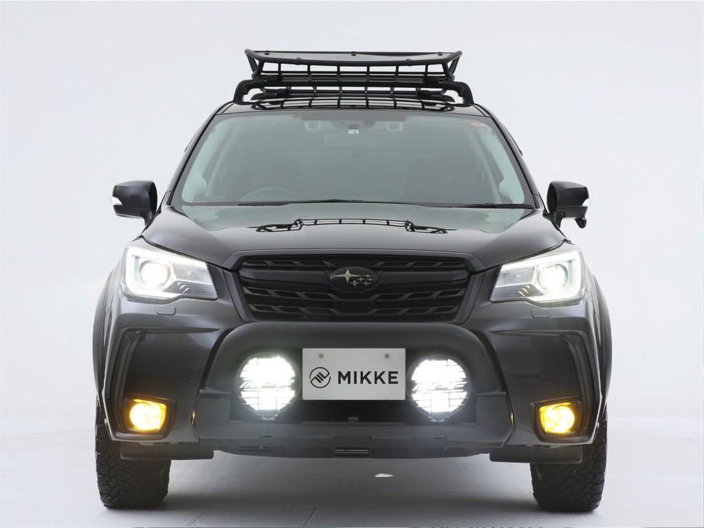 ヘッドライトは純正LED!グリルガードには追加でライト付きです!